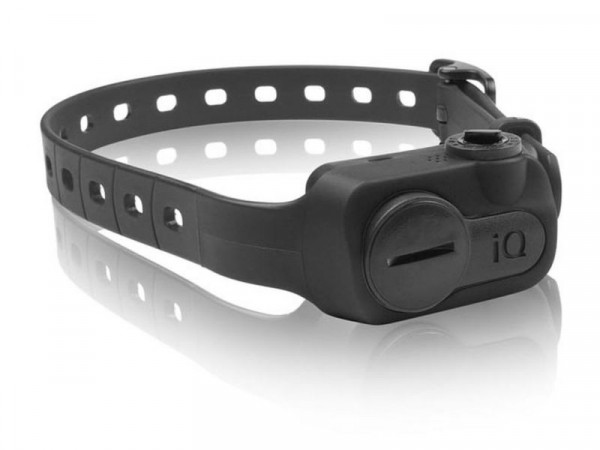 Dogtra iQ Anti-Bell Halsband