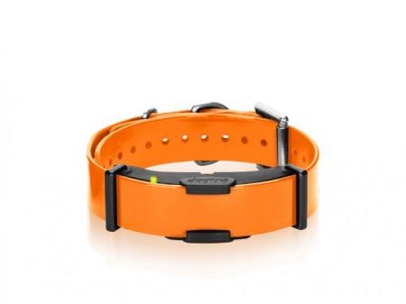 Dogtra Extra Halsband ARC800