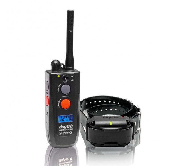 Dogtra Ferntrainer 3500NCP (1 Hund)